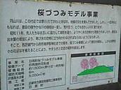 20130404_092427_4