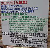 P6070062_5